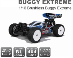 turnigy_extreme_buggy_main